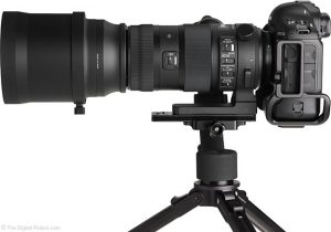 Sigma-150-600mm-Sports-Lens-review